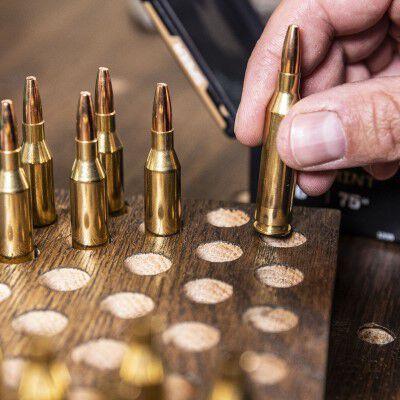 Loaded Bullets