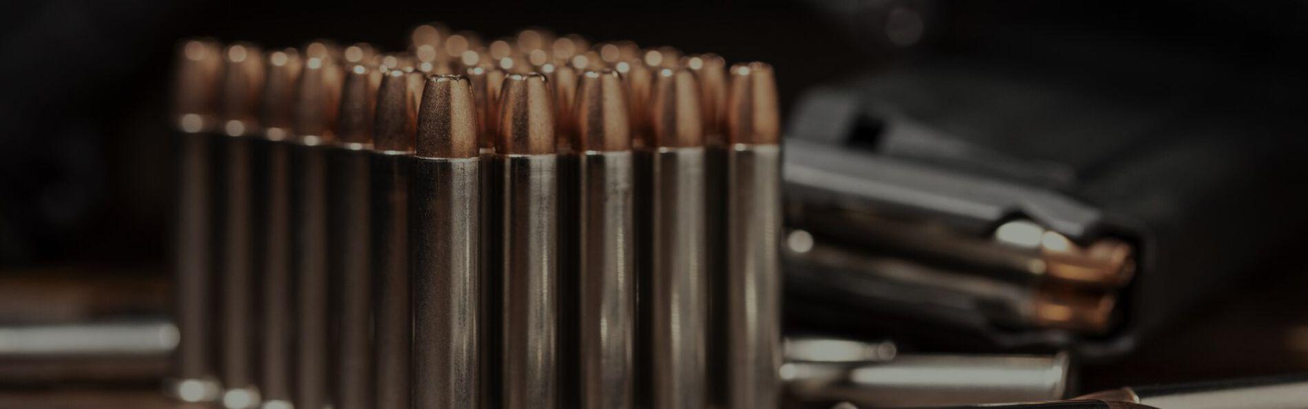 22WMR cartridges