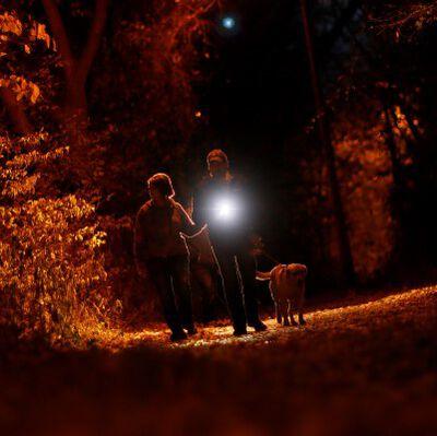man and woman walking a dog at night