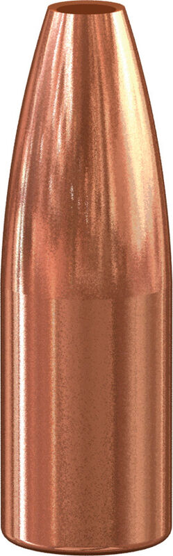 Varmint Hollow Point Bullet