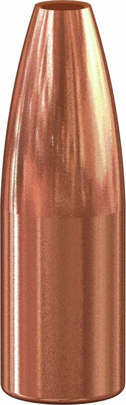 Varmint Hollow Point Bullet