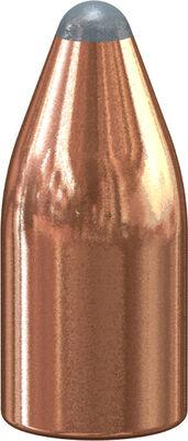 Varmint Soft Point Bullet